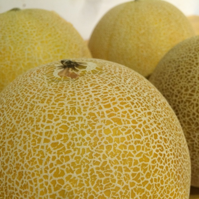 melon-fruit